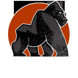 Revolution SE